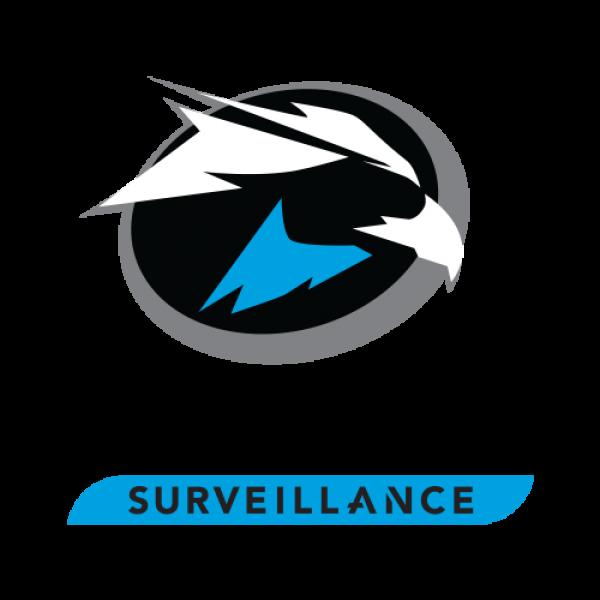 Hard disk 4TB - Seagate Surveillance SKYHAWK  ST4000VX