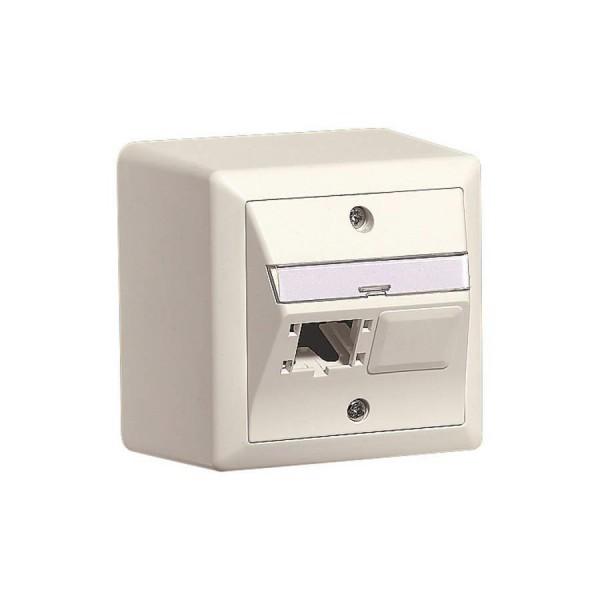 NET ACC OUTLET 2X1P 80X80/WHITE R310786 R&M